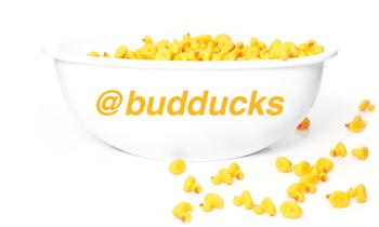 bud-duck-instagram_budducks.png