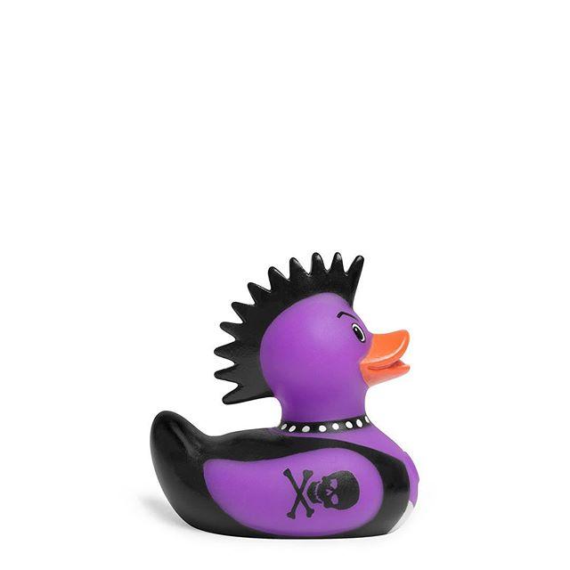 """Go your own way!"" — Punk Rocker Duck Big hair and tattoos = Guaranteed awesomeness! 😎💪😍 . . . . . #bud #punkrocker #duck #mohawk #spikedhair #leatherjacket #crossbones #choker #punkie"