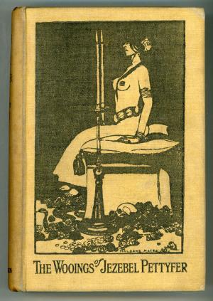 Mrow. They sure knew how to do book covers back in the '20s, eh?
