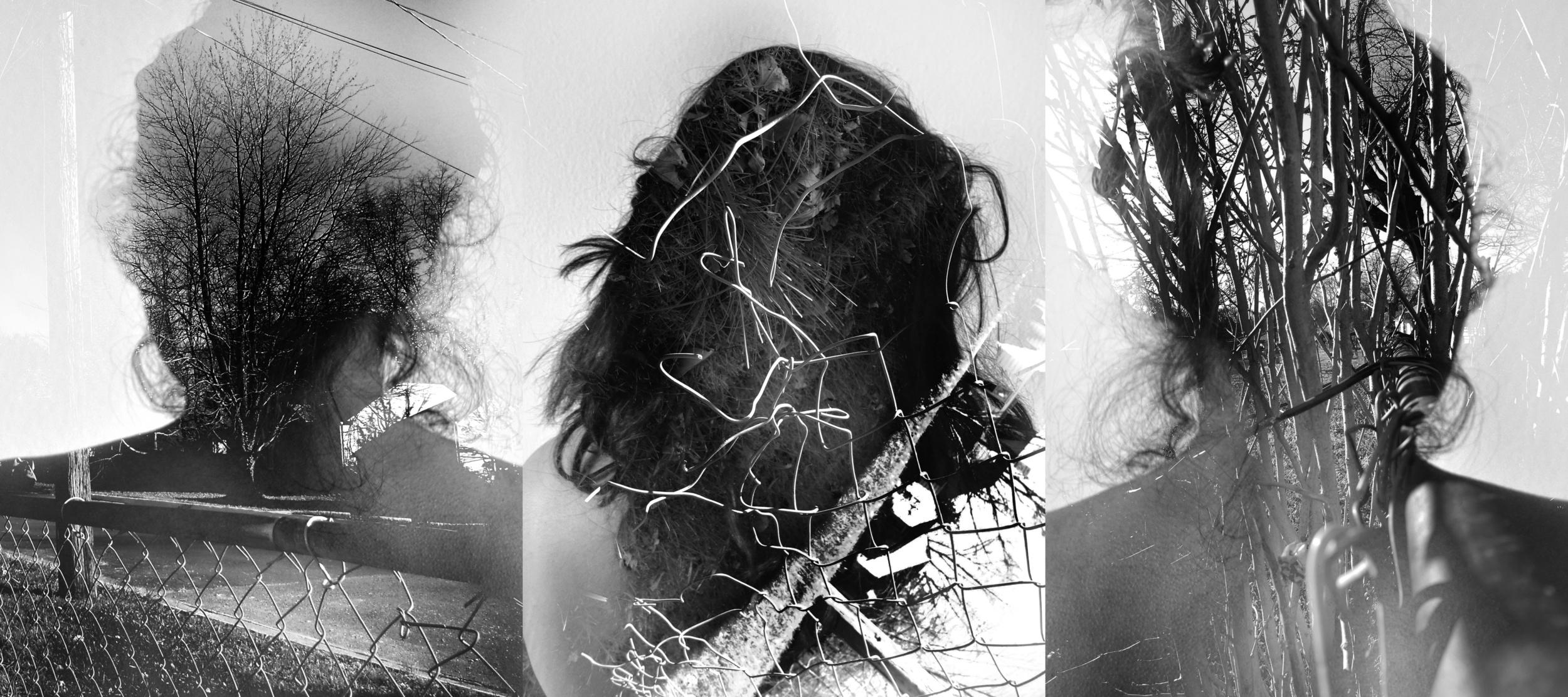 dayal_dilpreet_triptych.jpg