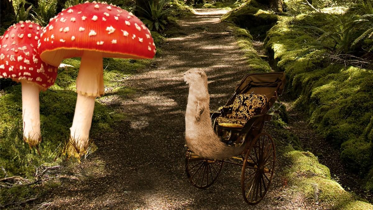 Elizabeth Hernadez, Photoshop Surrealist Collage