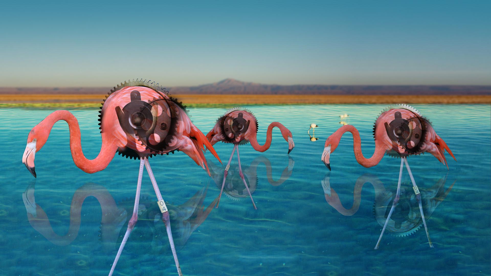 Leah Cornblatt, Photoshop Surrealist Collage