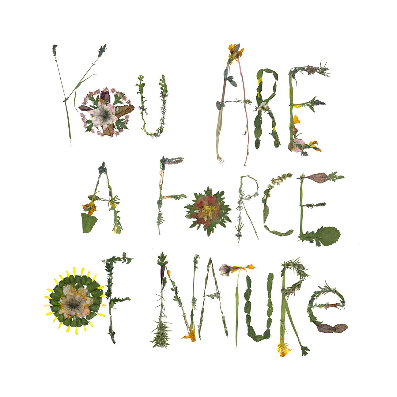 plants_force_of_nature_web.jpg
