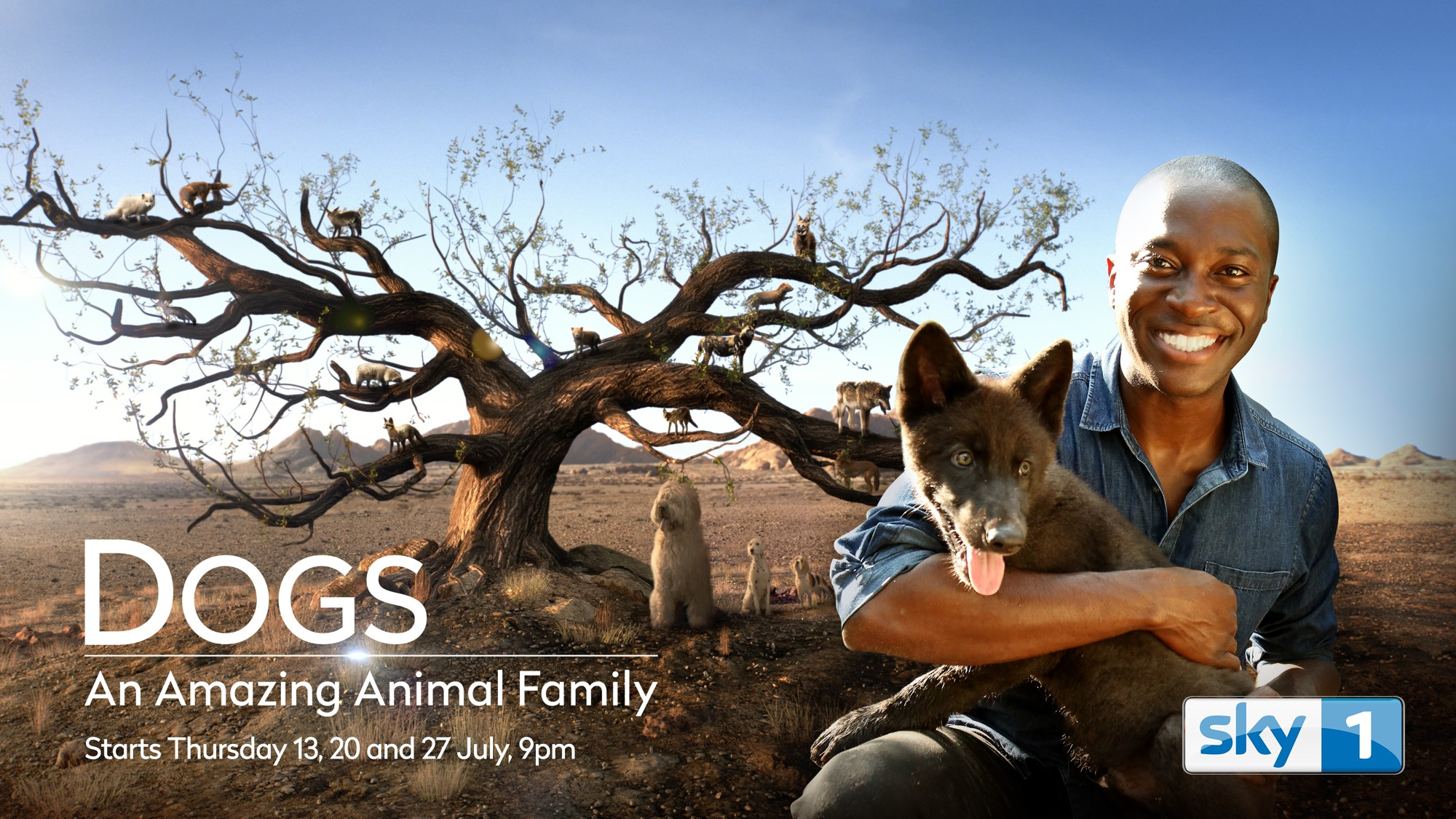Dogs: An Amazing Animal Family series. - United Kingdom • 2016