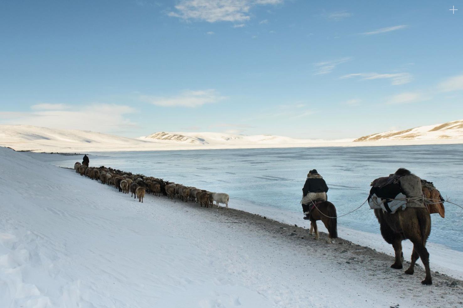 Spring Migration of the Kazakh nomads - Karolina Törnqvist Photography expedition • Sweden • 2018