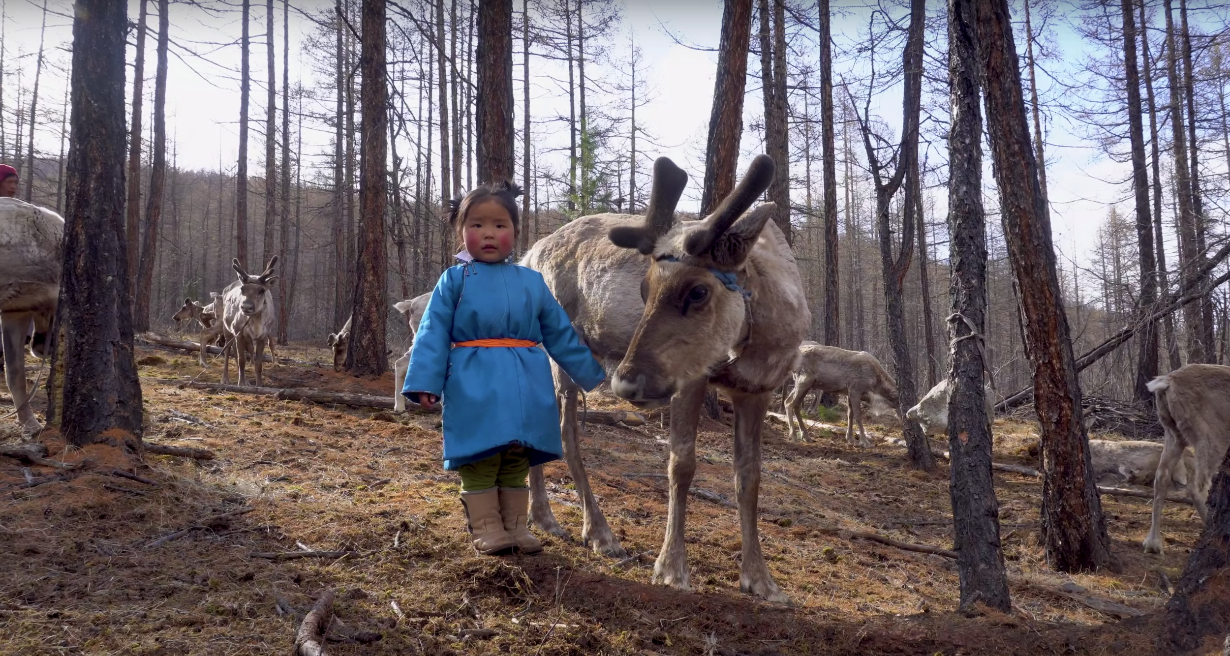 The Reindeer Tribe - What3words & Airbnb TVC • UK • 2018
