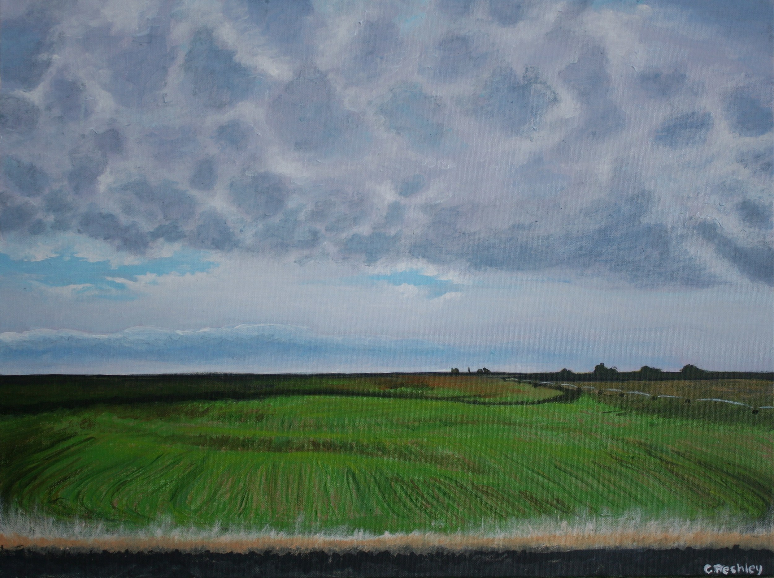 """Palouse #3 - 18""""x24"""" - Not available"""