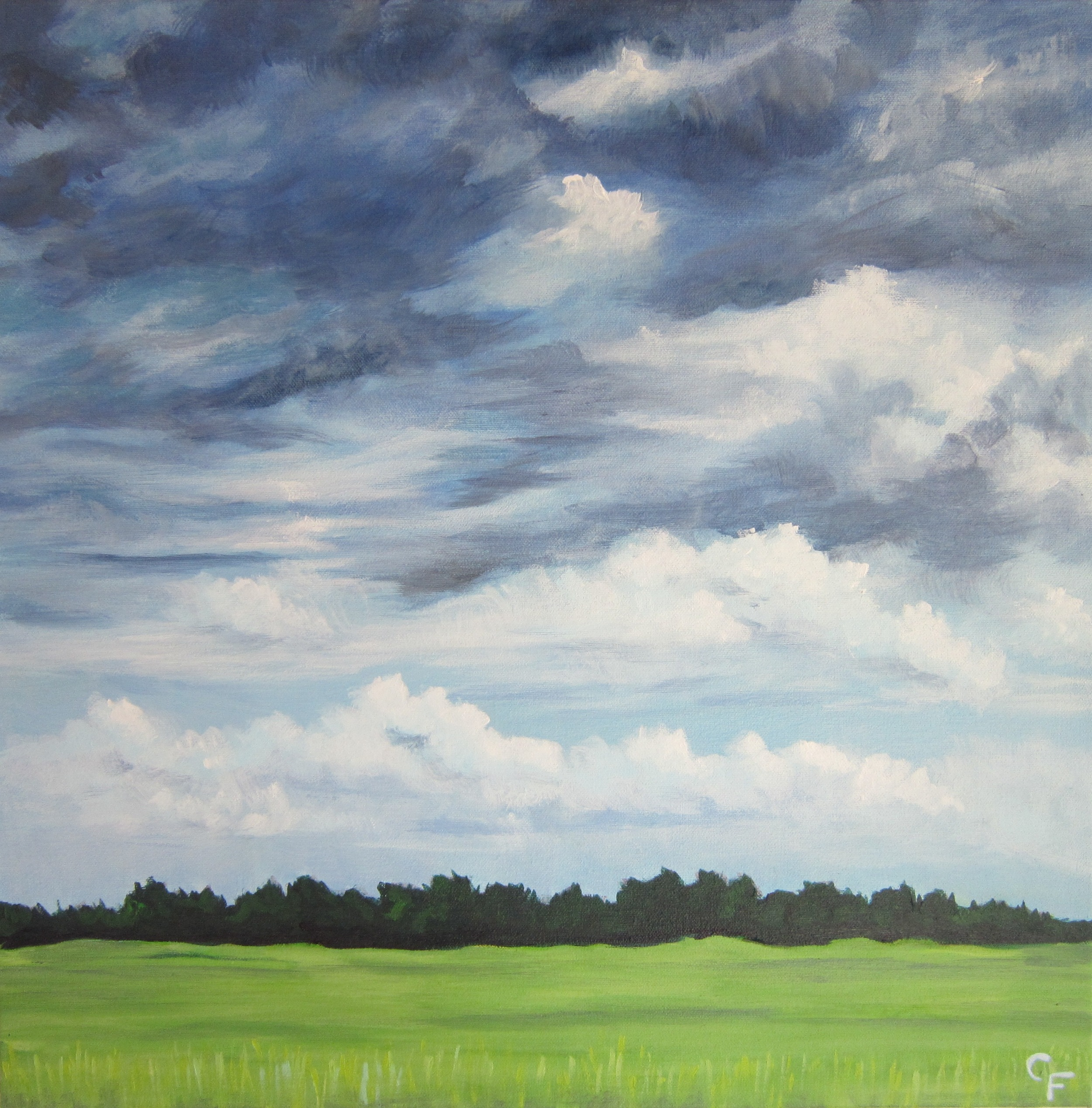 "Muskogee Summer Field - 20""x20"""