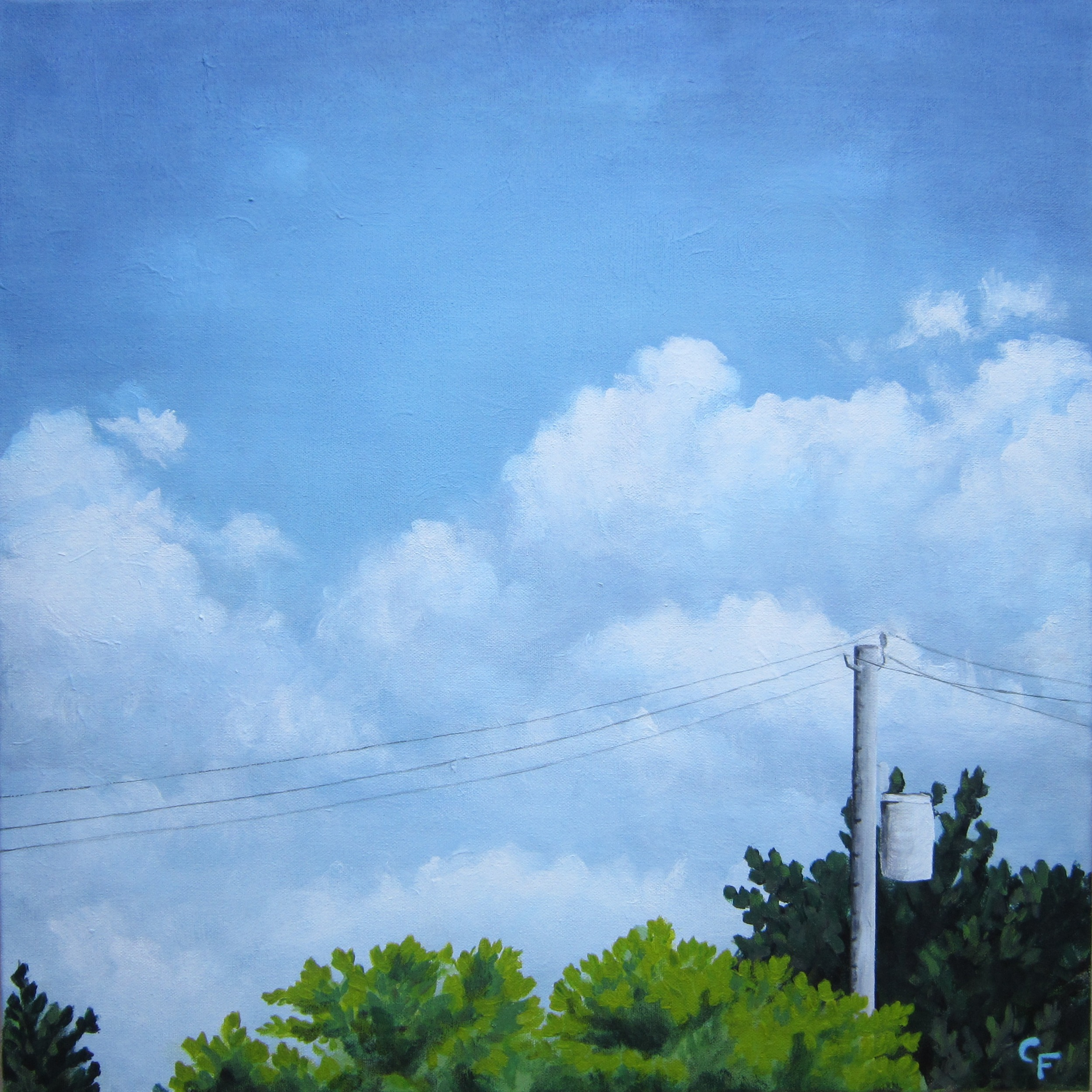 "Telephone Wires - 20""x20"" - SOLD"