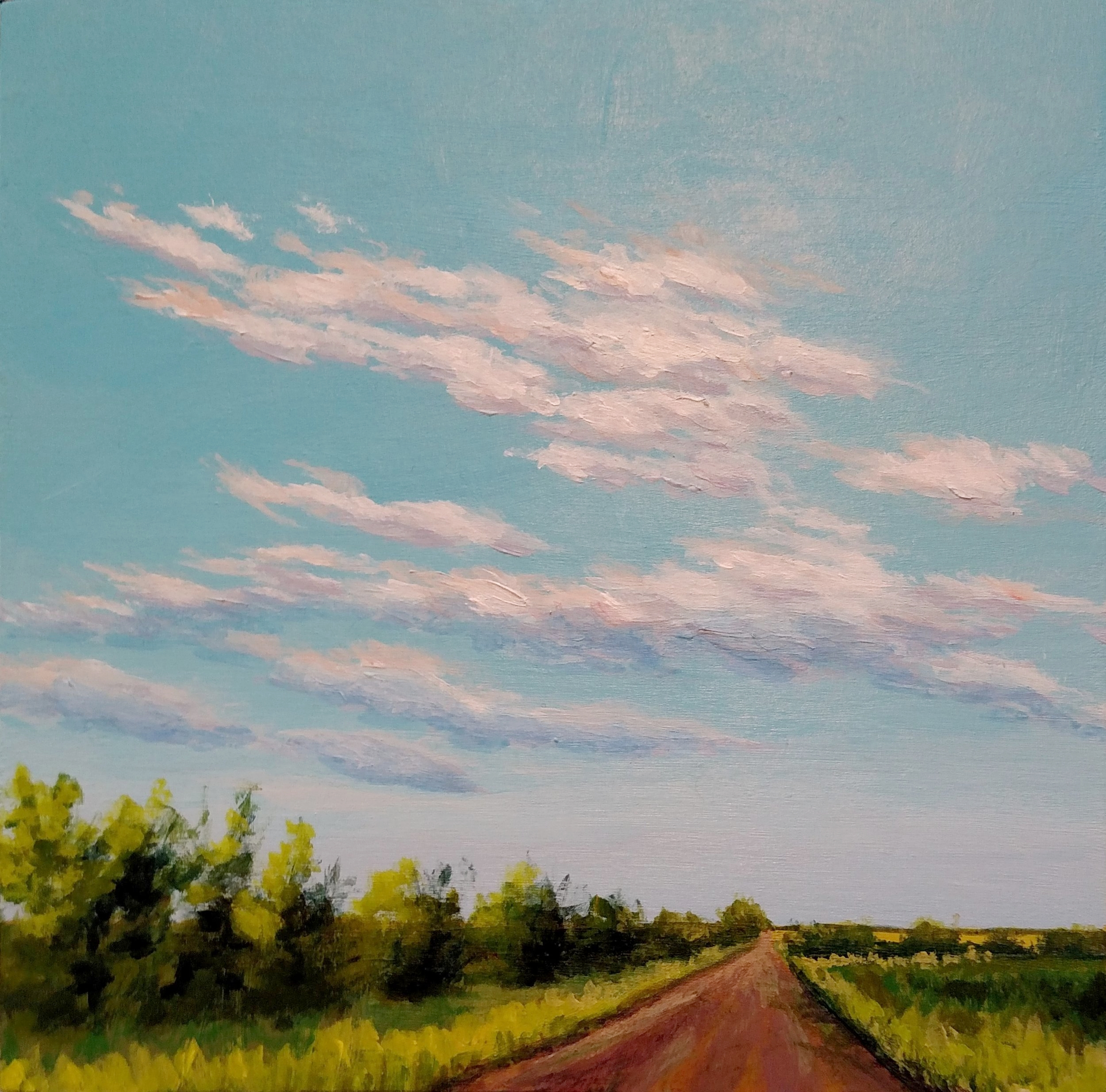 SOLD Going to Lake McMurtry #2
