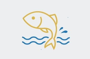 settefisk
