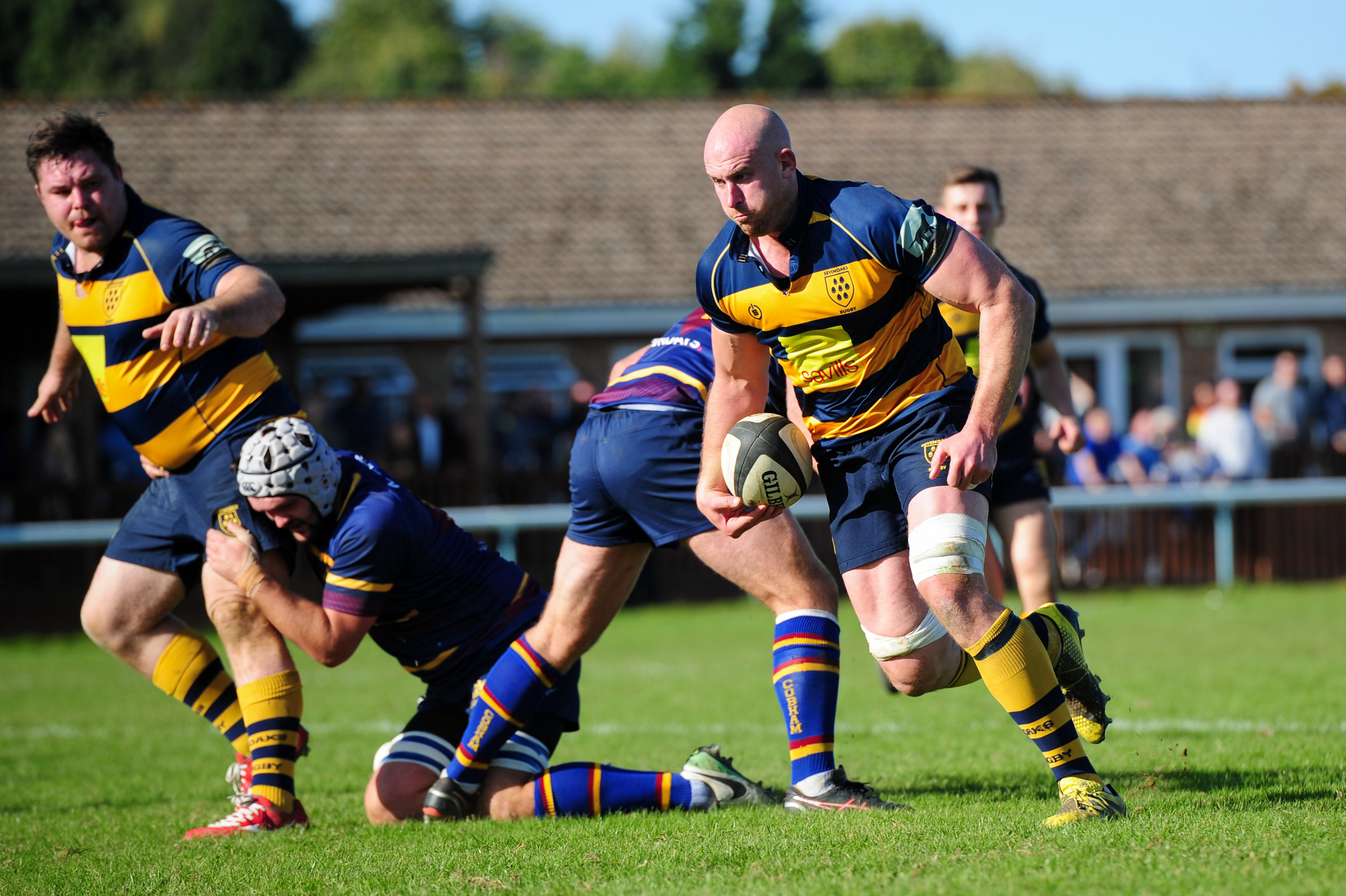 Oaks Skipper Stu Coleman on the charge against Cobham RFC earlier this season at a sunny and packed Paddock.  Photo Credit: David Purday