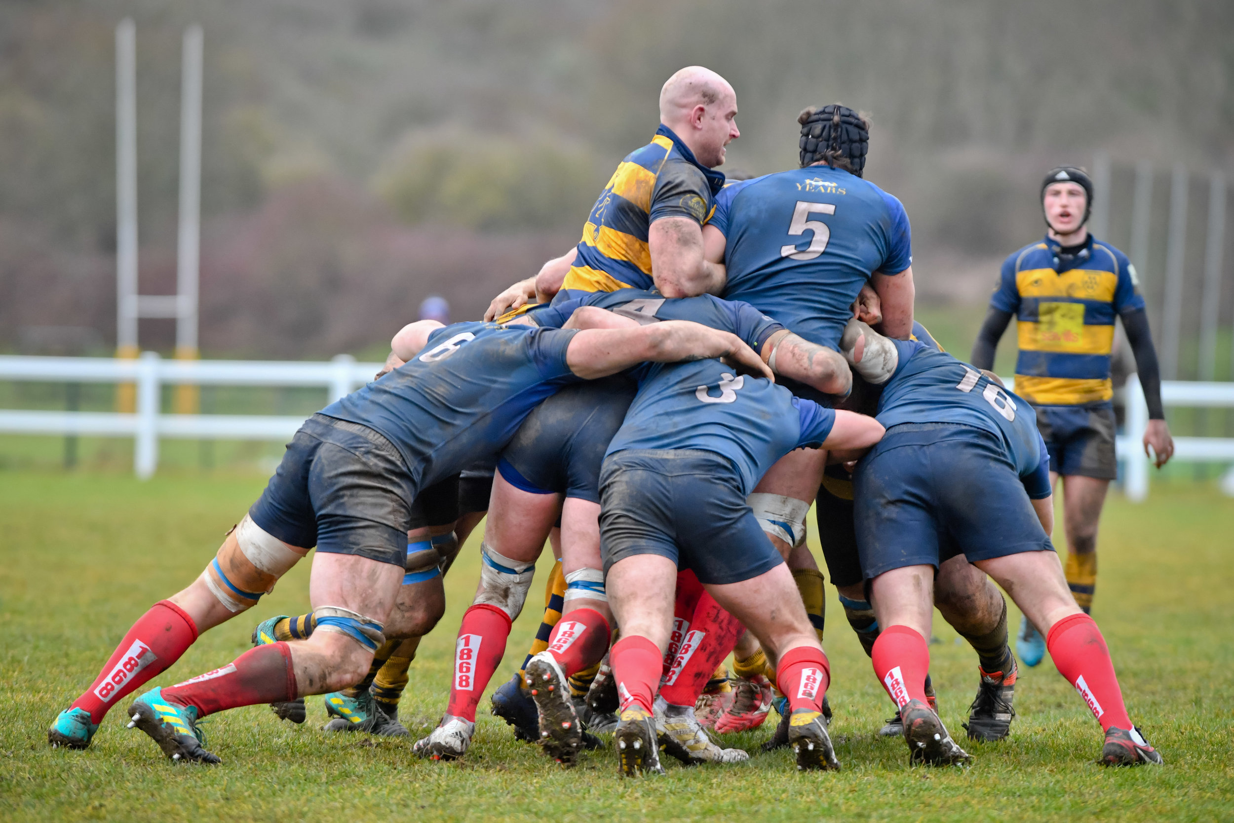 The Oaks and Blues pack went toe to toe throughout the eighty minutes in a bruising encounter.  Photo Credit: David Purday