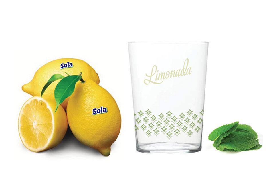limonada__0009_13.jpg