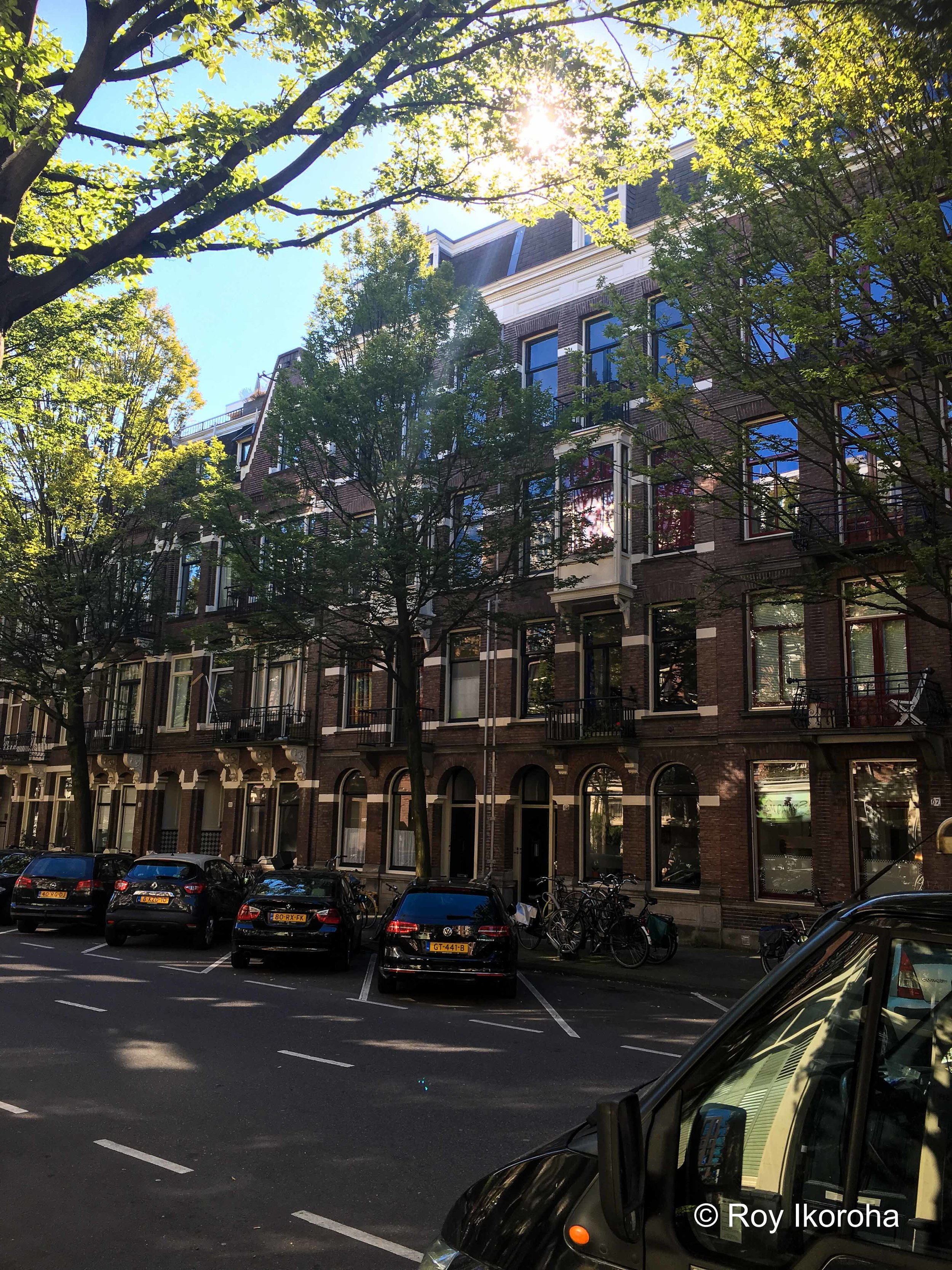 """View from """"Ted's"""" 
