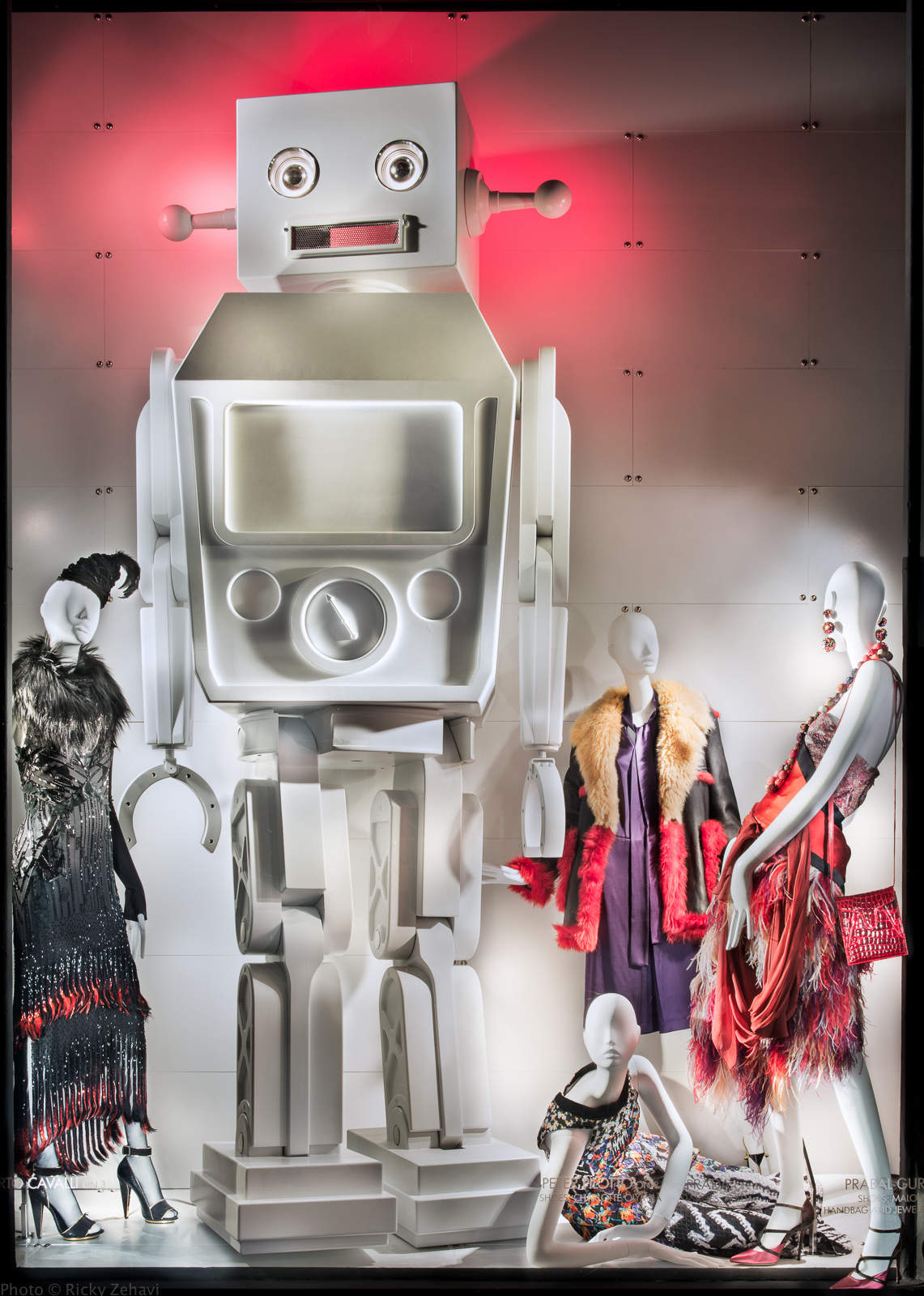 001_Rzehavi_BG_robots_9_1_2014-1.jpg