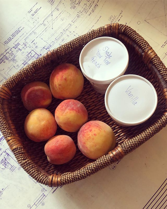 A+ vendor gift presentation / peaches and homemade ice cream for all 🙌 #summertime #lifeofanarchitect