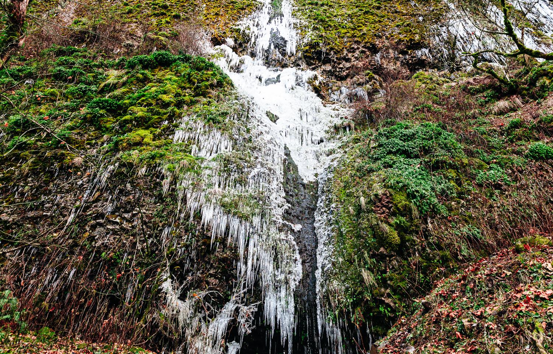 OregonLandscapePhoto-7.jpg