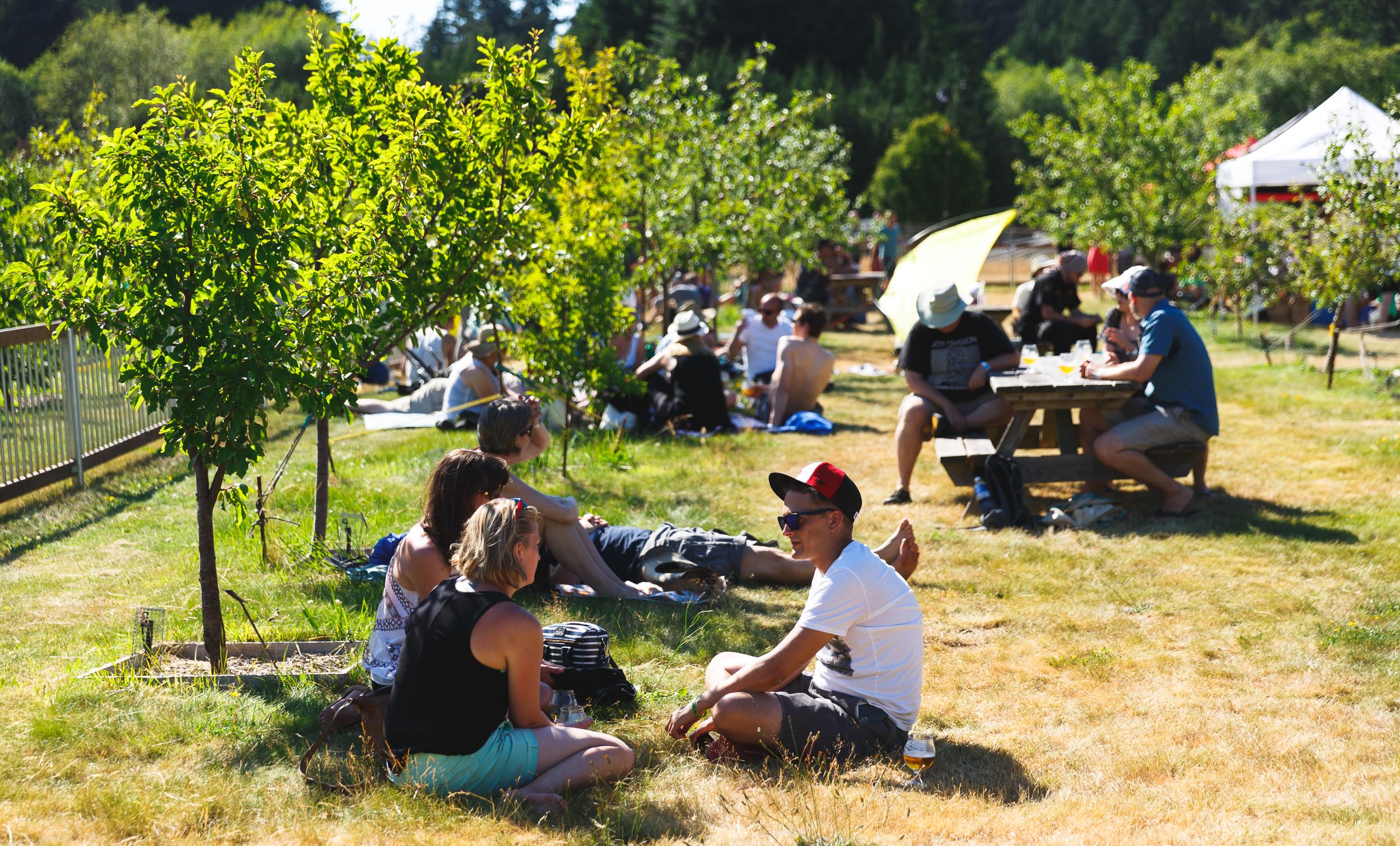 Farmhouse-Fest-Vancouver-image39.jpg