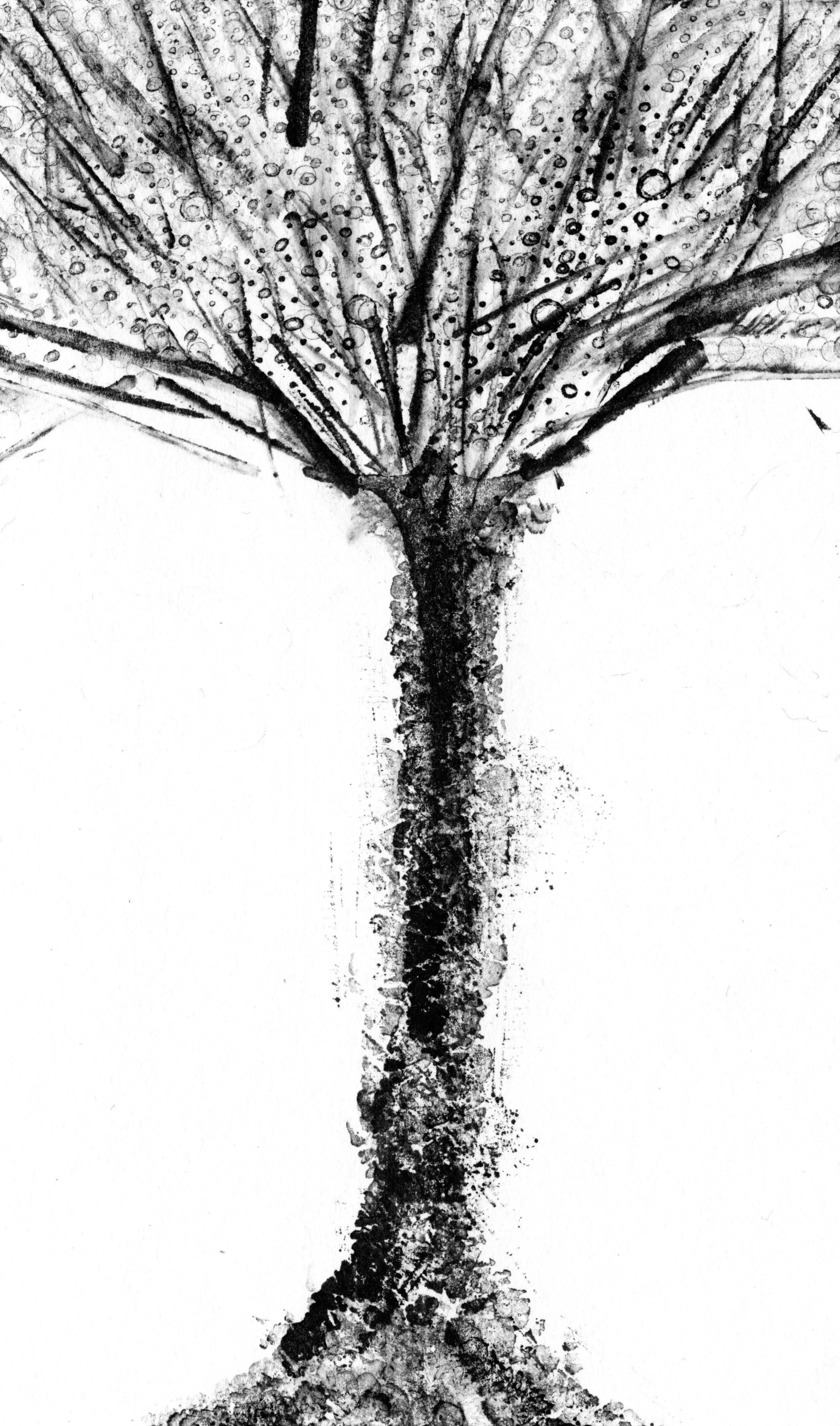 trees_white09.jpg