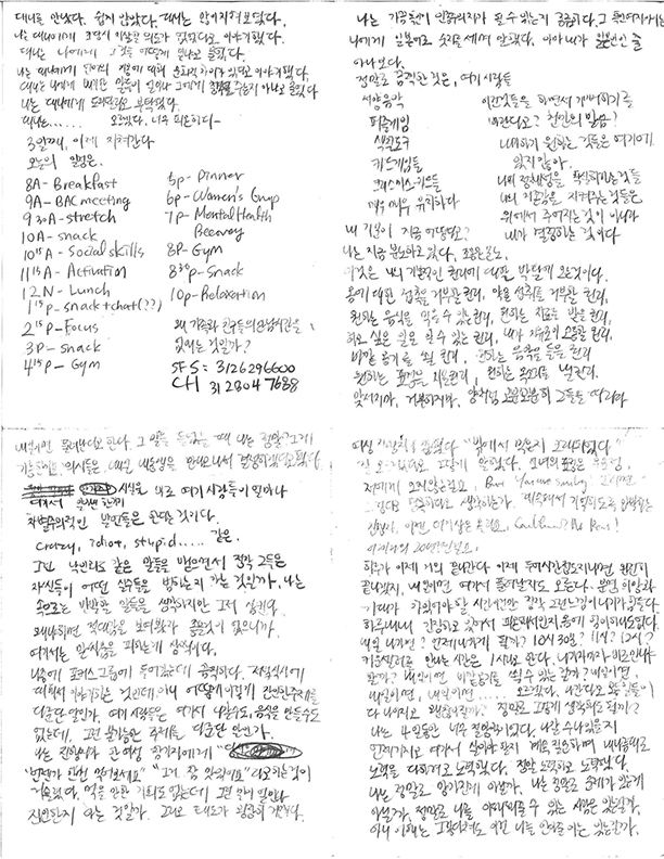Images of the journals Euree wrote while in the institution. Fear of being censored, she wrote mostly in Korean.  The poetry and essay are based on this written record.