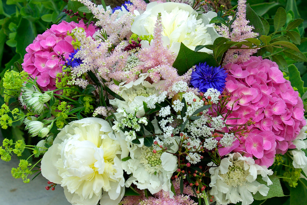luxury birthday bouquet - hydrangea, peonies, astilbe, scabious