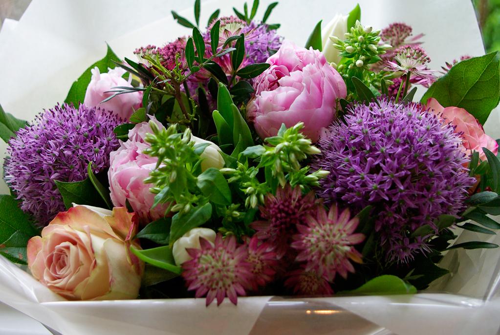 peonies, allium, roses, astrantia, phlox