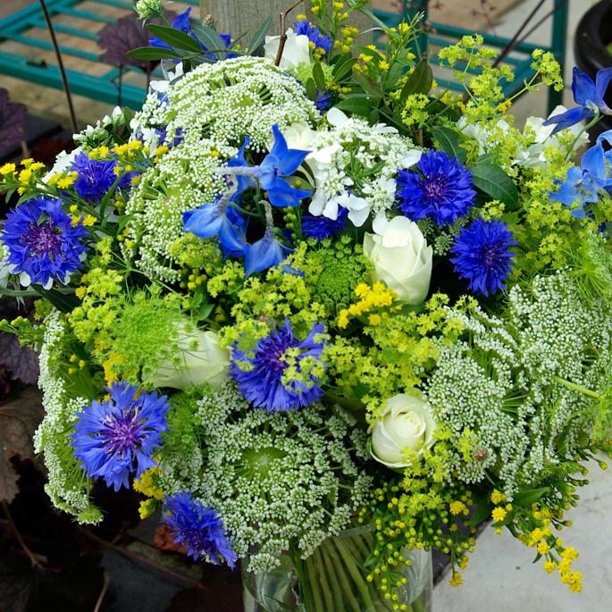 delphinium, cornflower, ammi, solidago