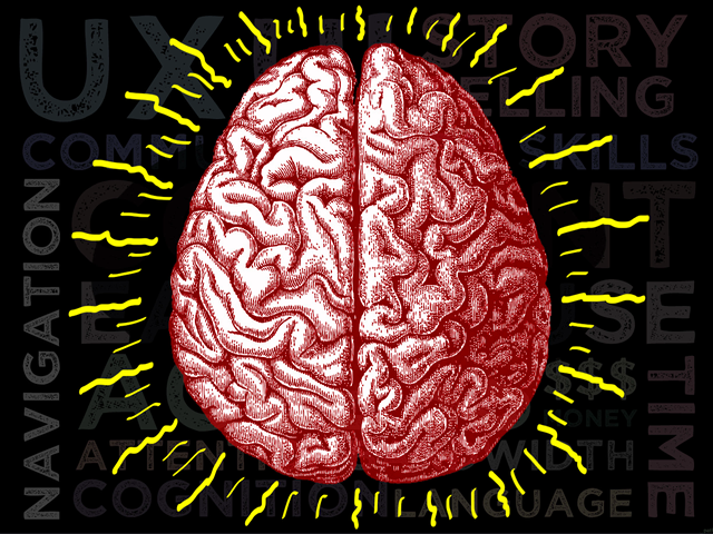 Mooc 2 Brain