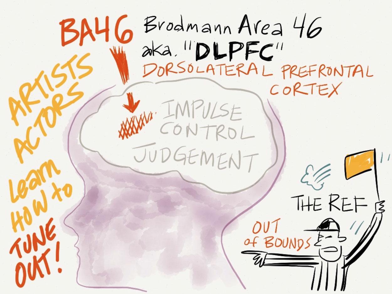 presentation-Brodmann-46.jpg