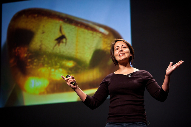 Beth Shapiro describes the science of de-extinctionat the 2010 PopTech Conference.