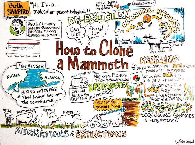 how-to-clone-a-mammoth-scribing.jpg