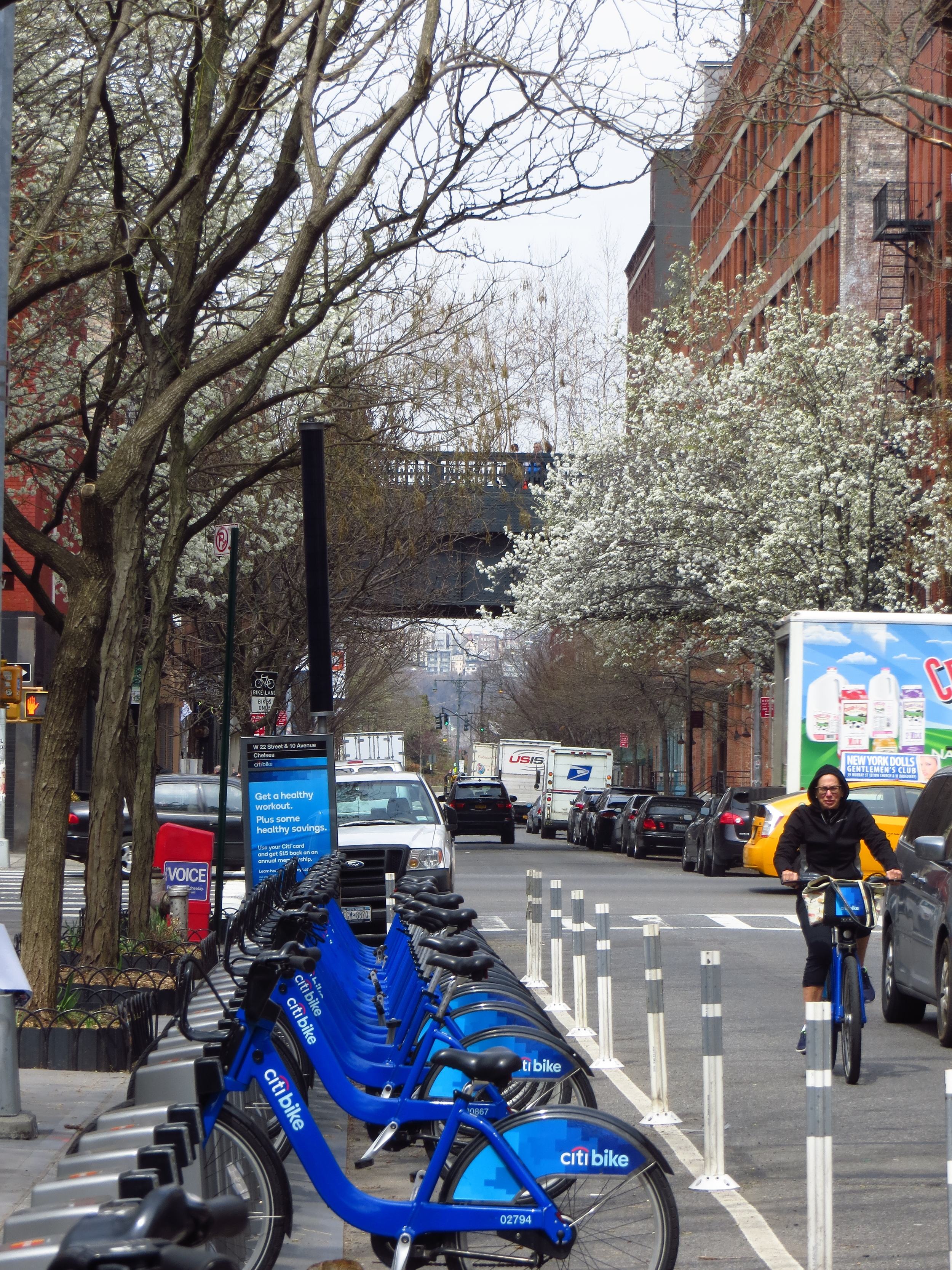 View of Highline in Chelsea #2 (w/Citi Bikes)
