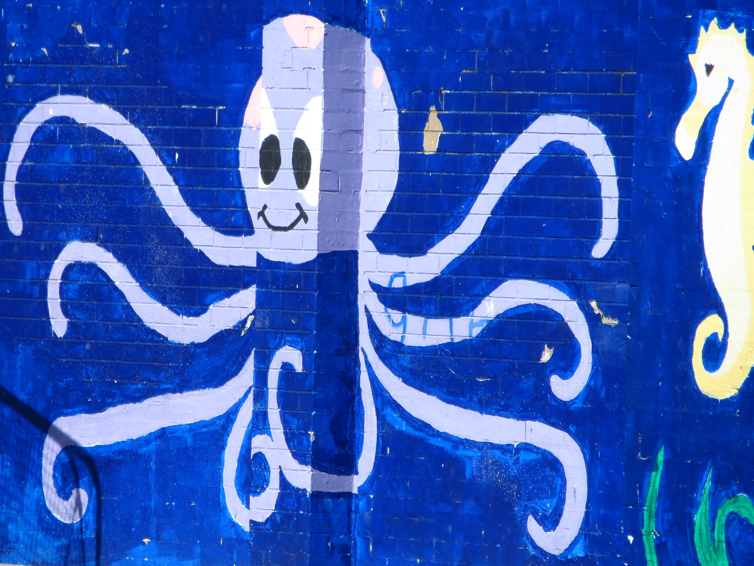 Happy Octopus #2