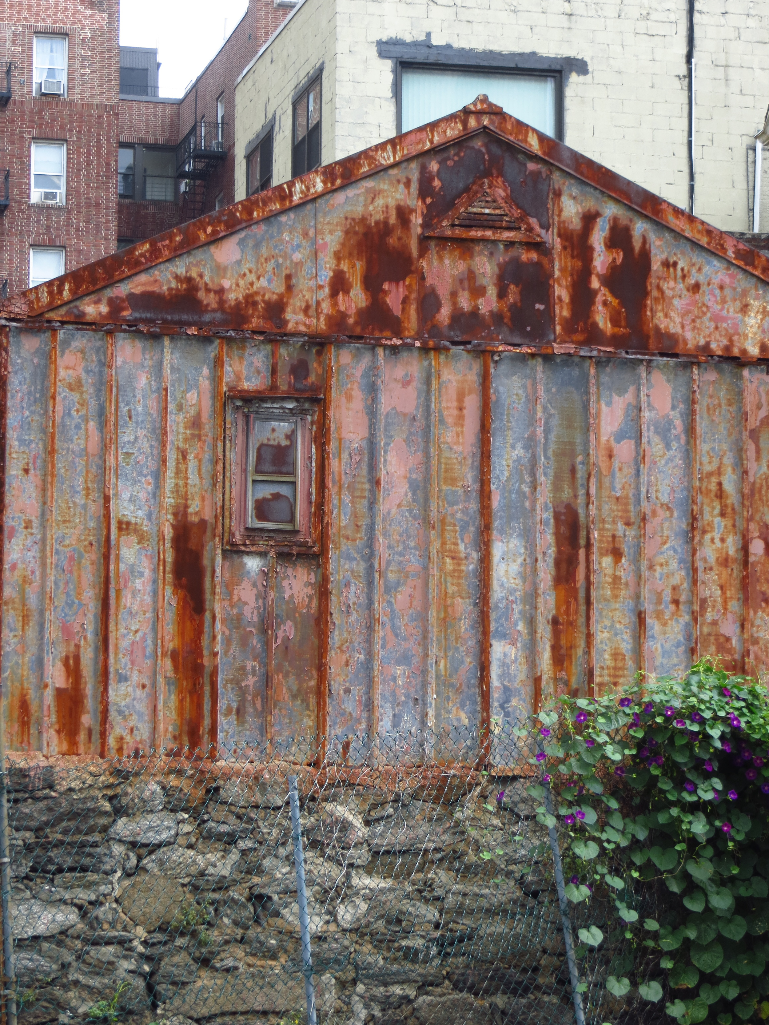 Multi-colored shed