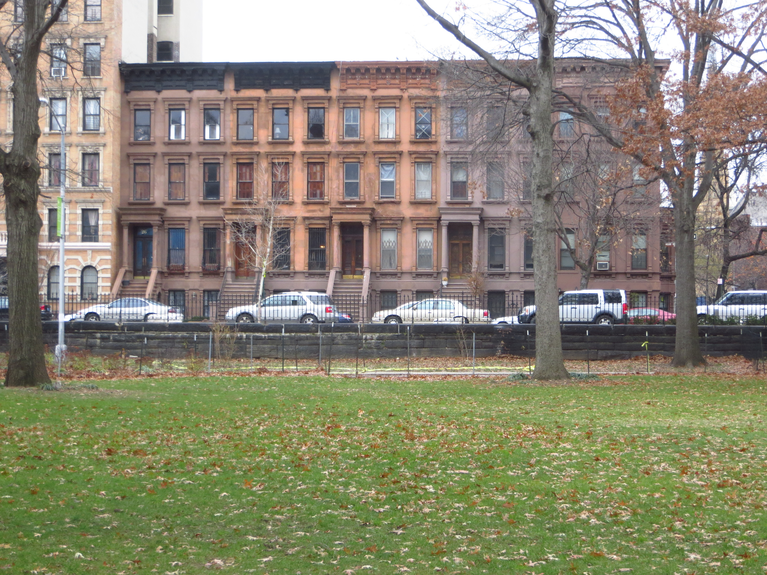 Brownstones from Marcus Garvey Park