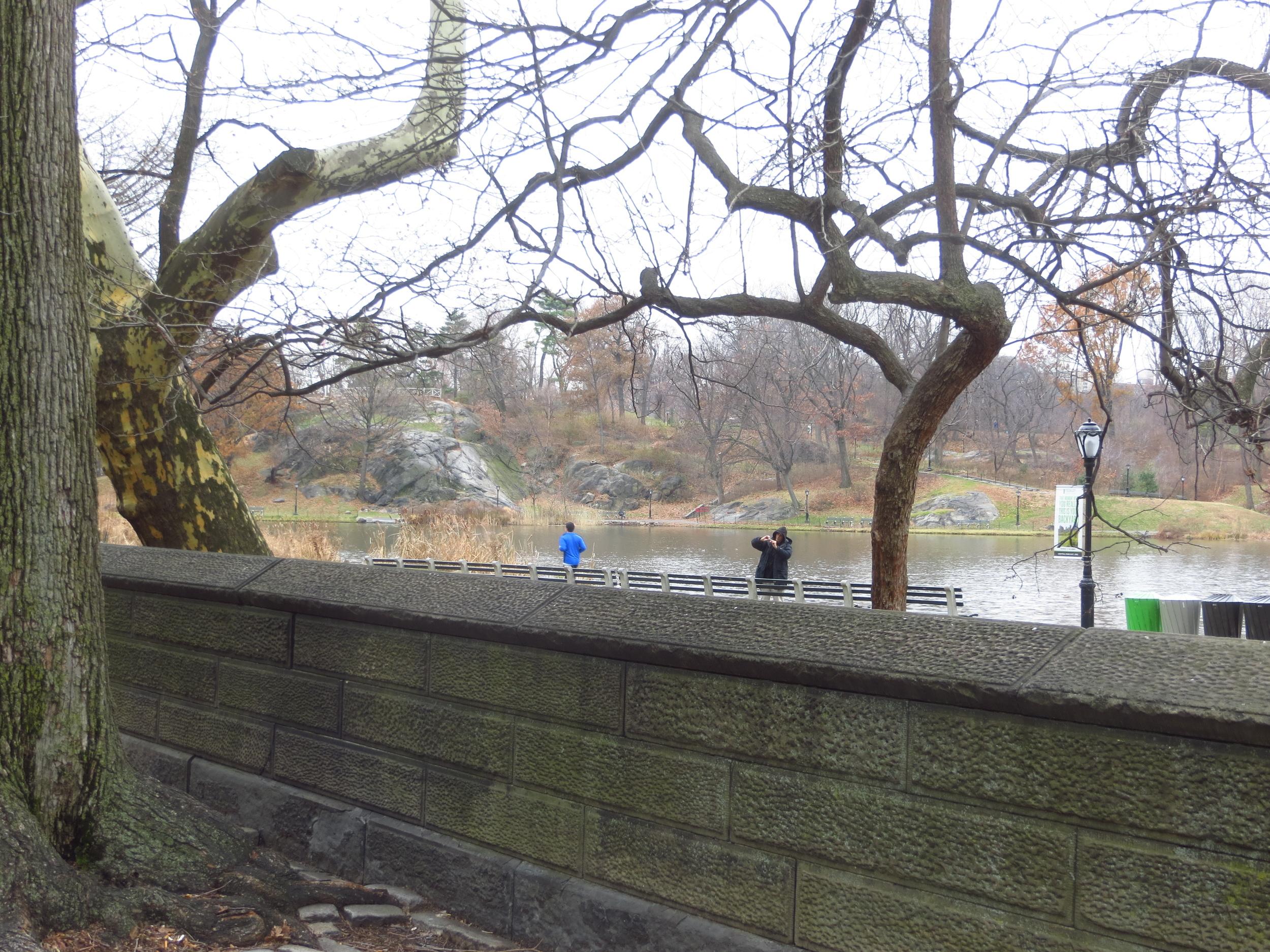Harlem Meer (north end of Central Park)