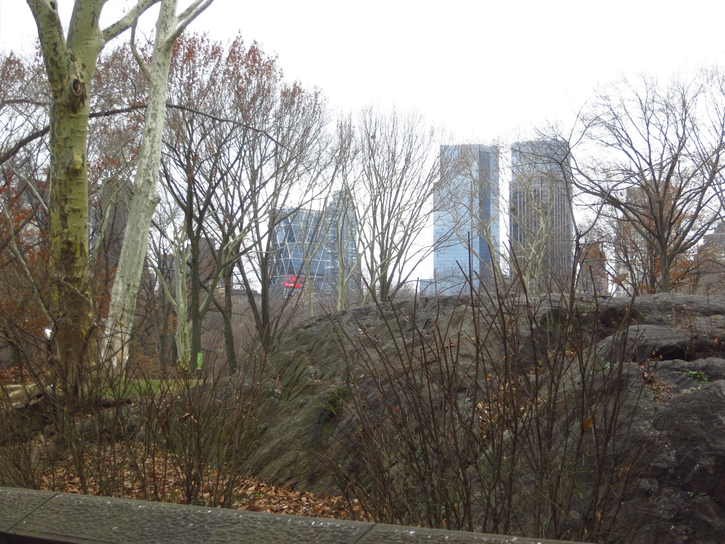Time Warner Center across the Park