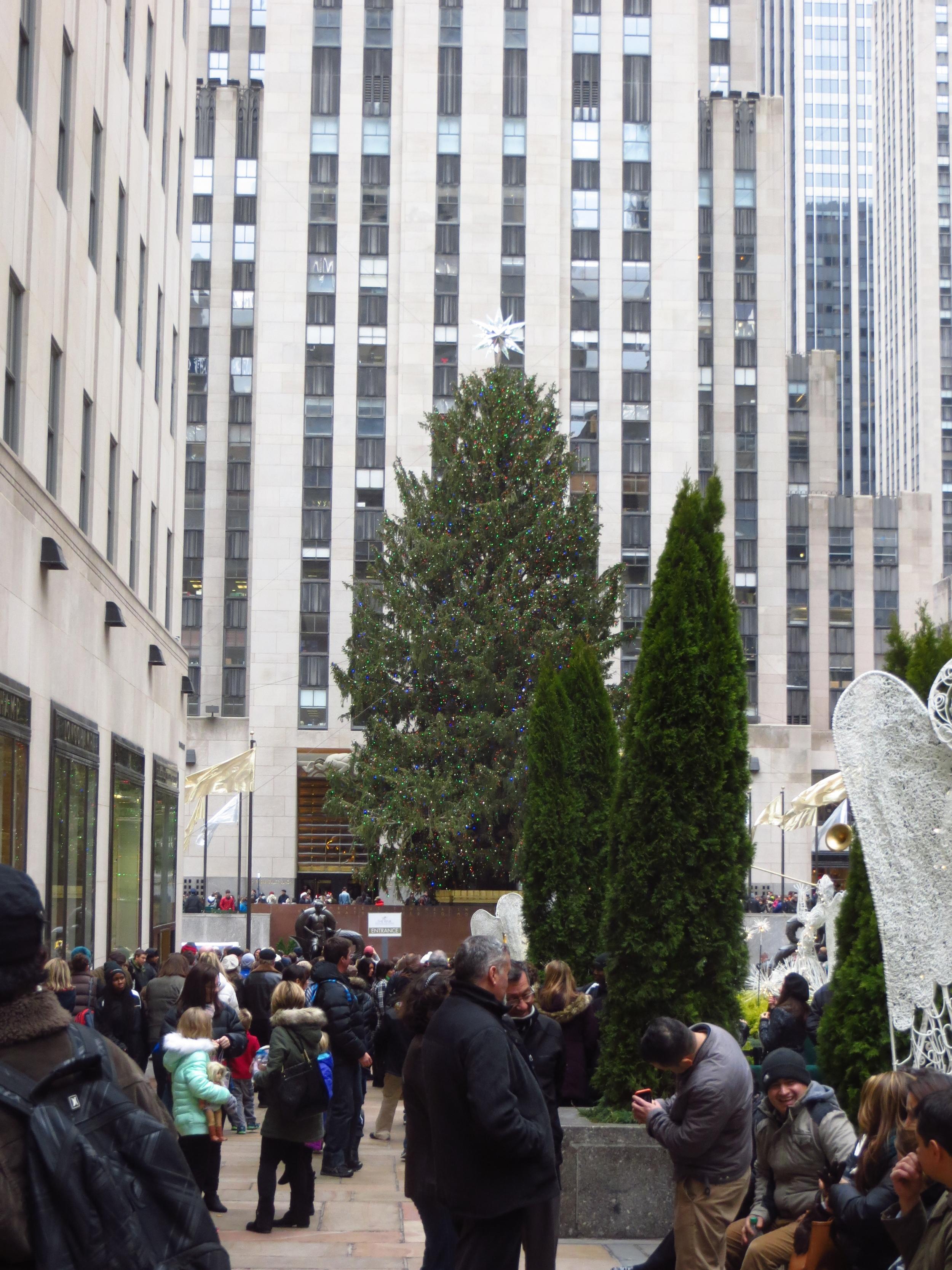 Rockefeller Center Christmas Tree (b. 2014)