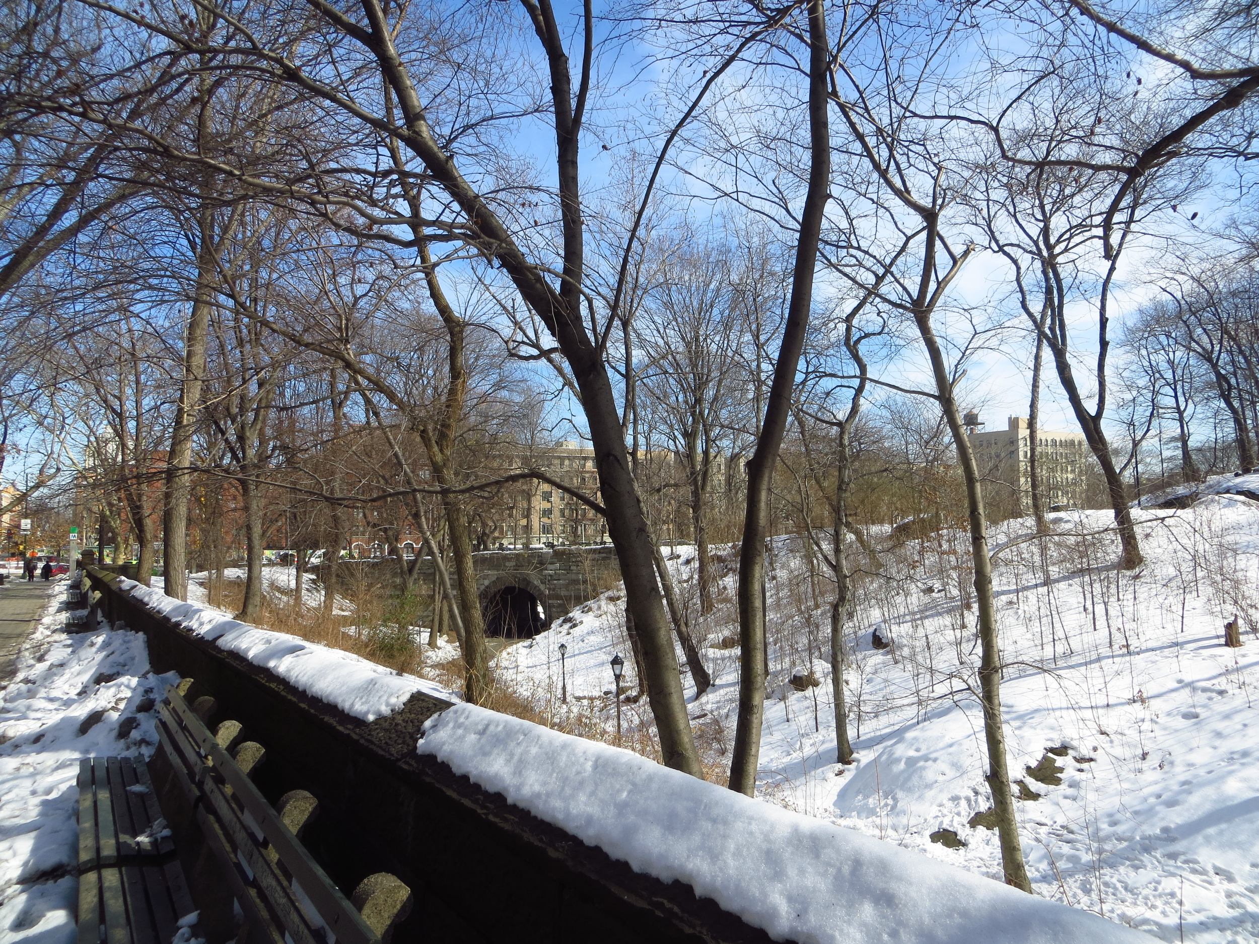 View into Central Park