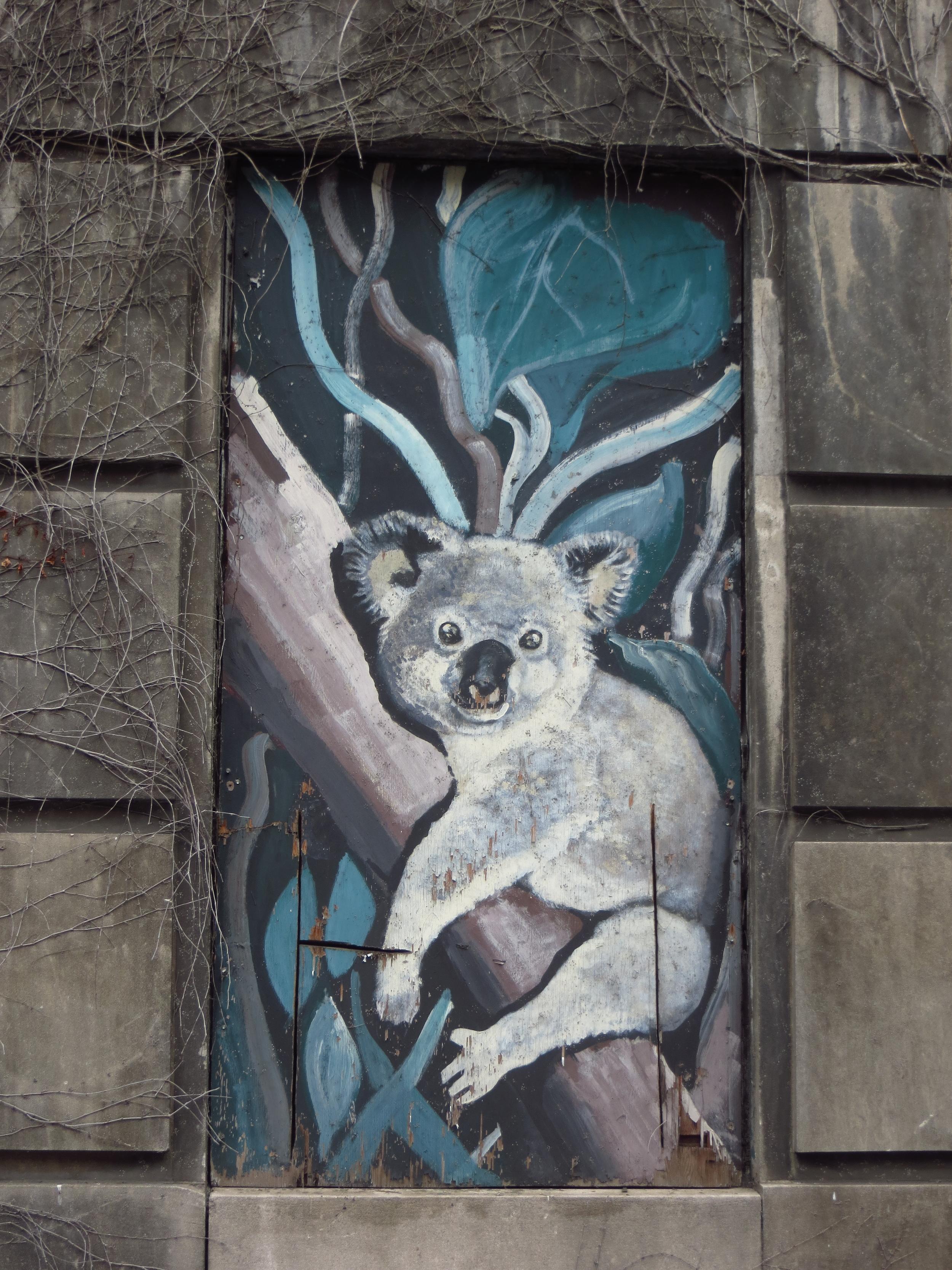 Koala on Boarded-Up Window of Former Psychiatric Hospital