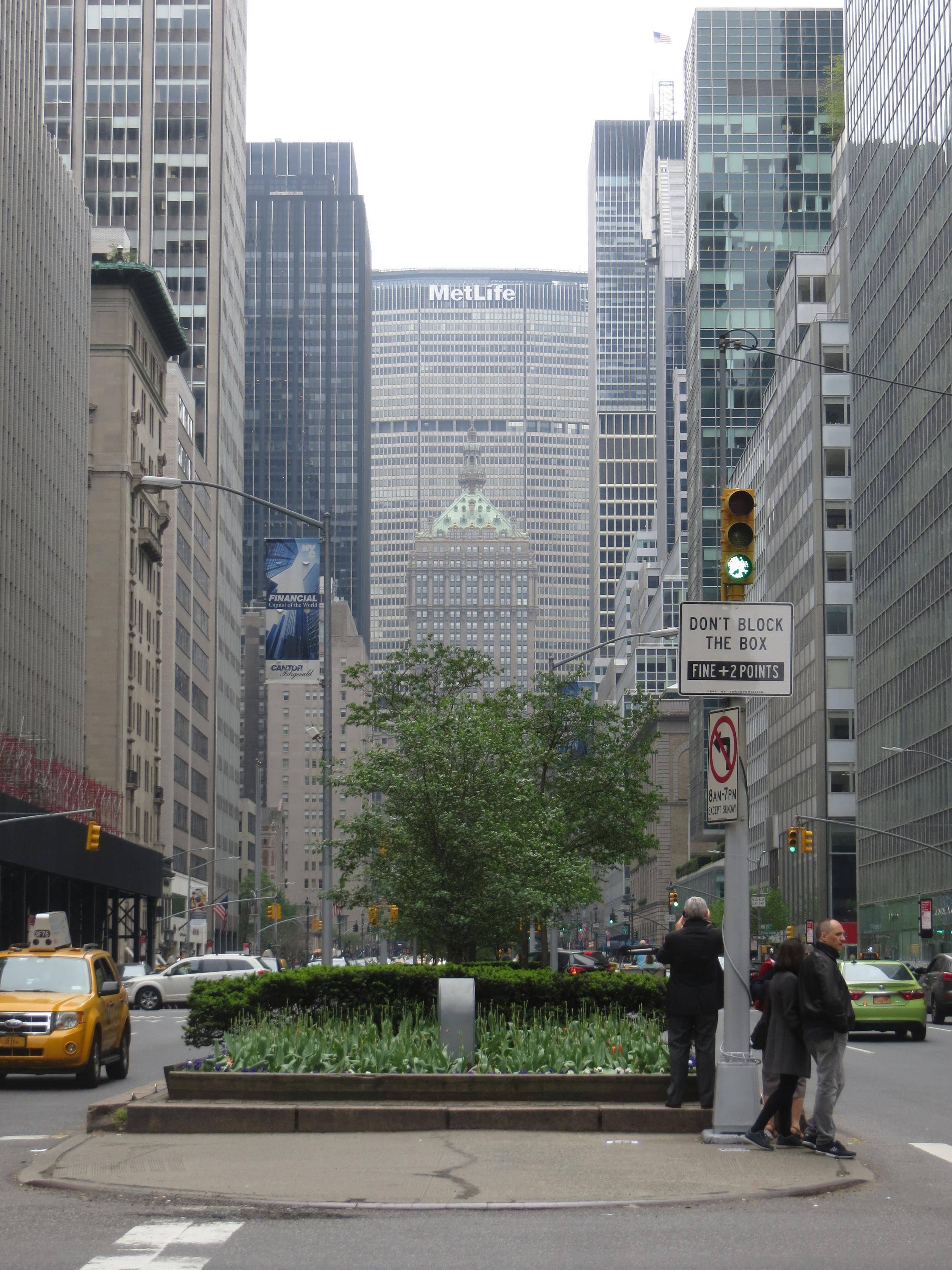 View down Park Avenue
