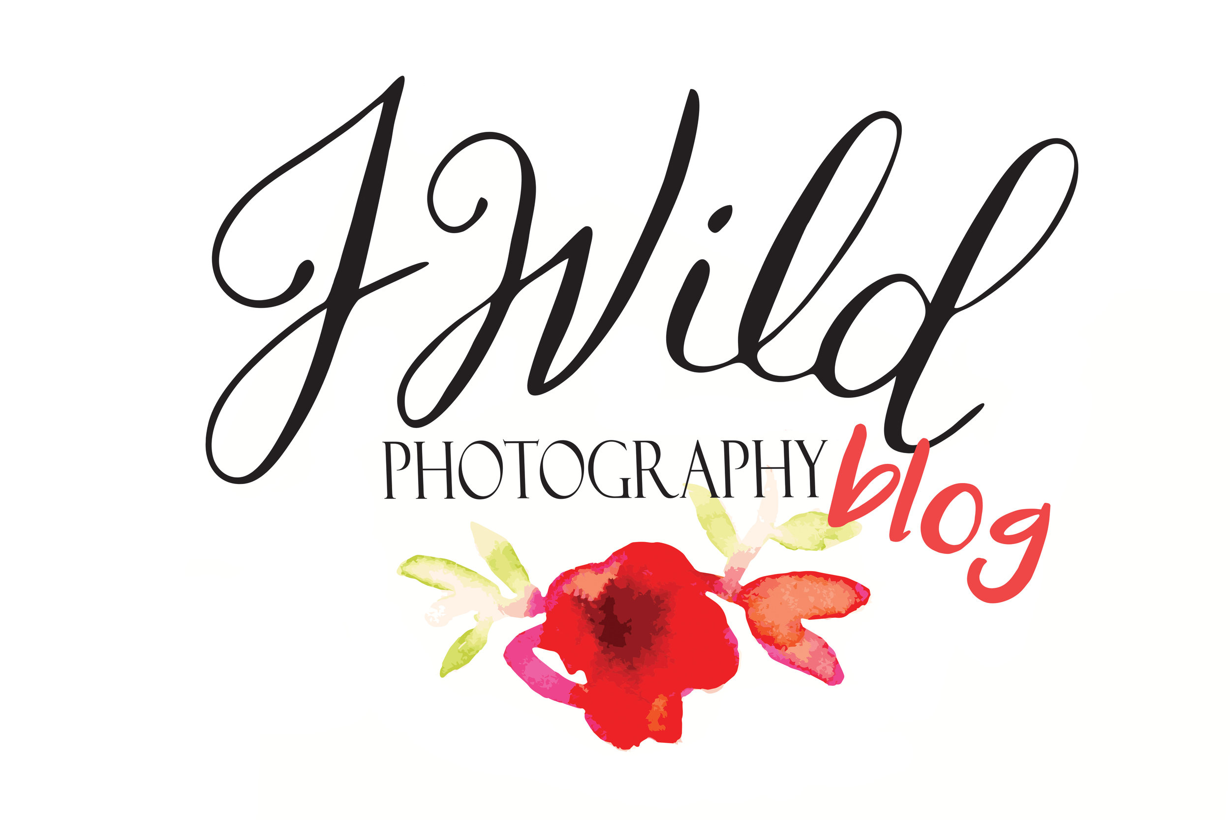 Check out our latest weddings, sessions, and musings. - We're glad you're here!