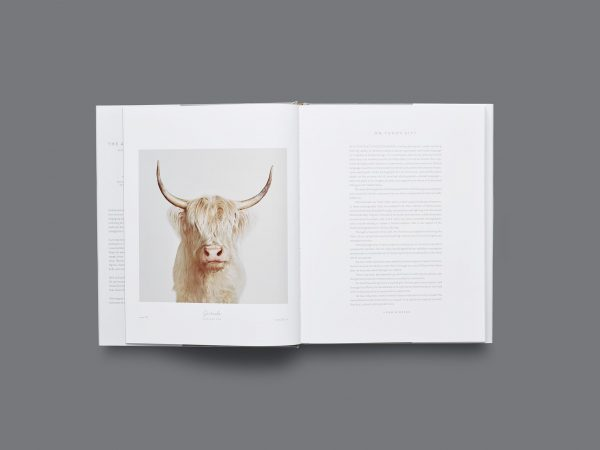 Randal Ford Animal_Kingdom-5-e1538061296790.jpg