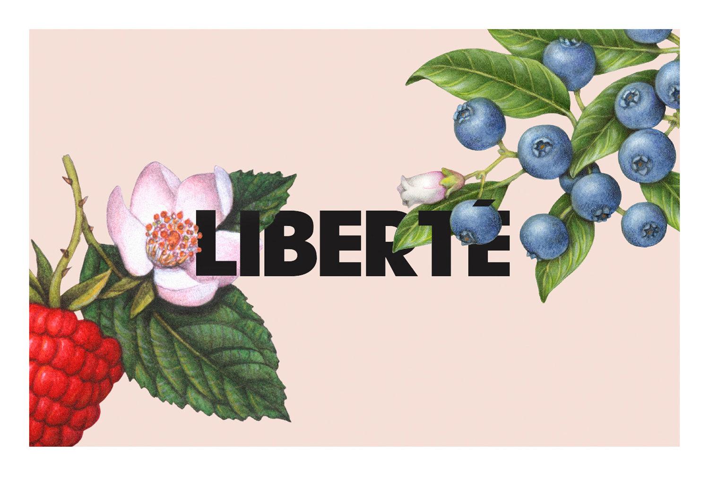 LIBERTE_ORGANIC_STANDMTL1.jpg