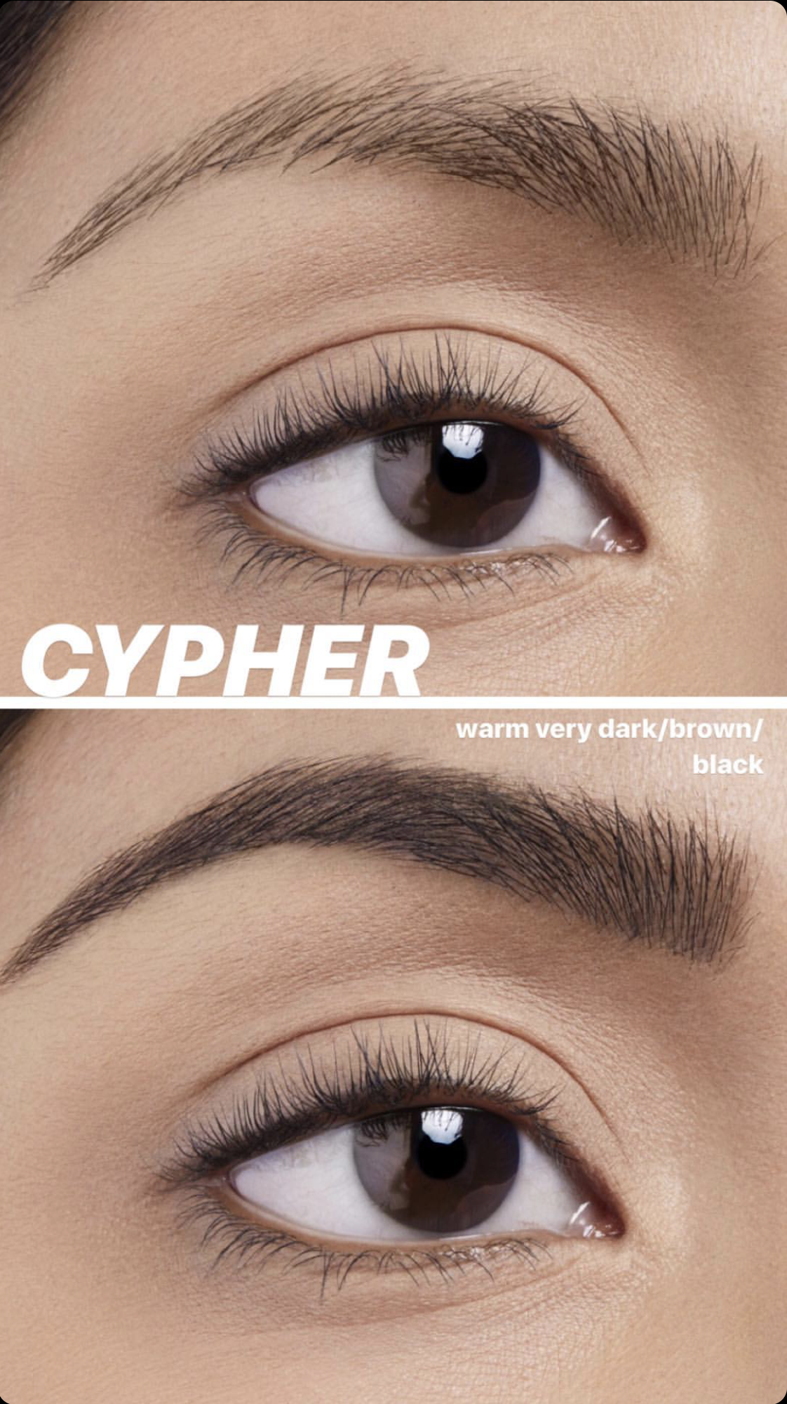 "Deep new shades ""Cypher"" and ""Diesel"" are new offerings for skintones beyond medium."