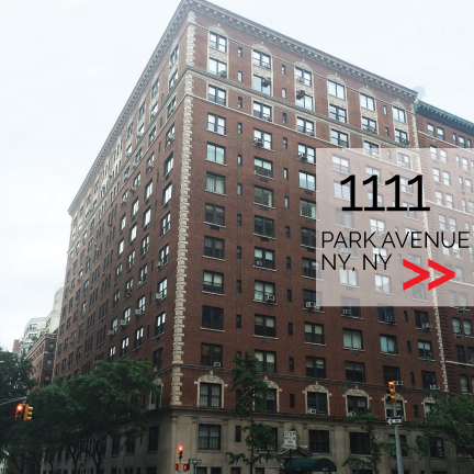 1111-park (2).png
