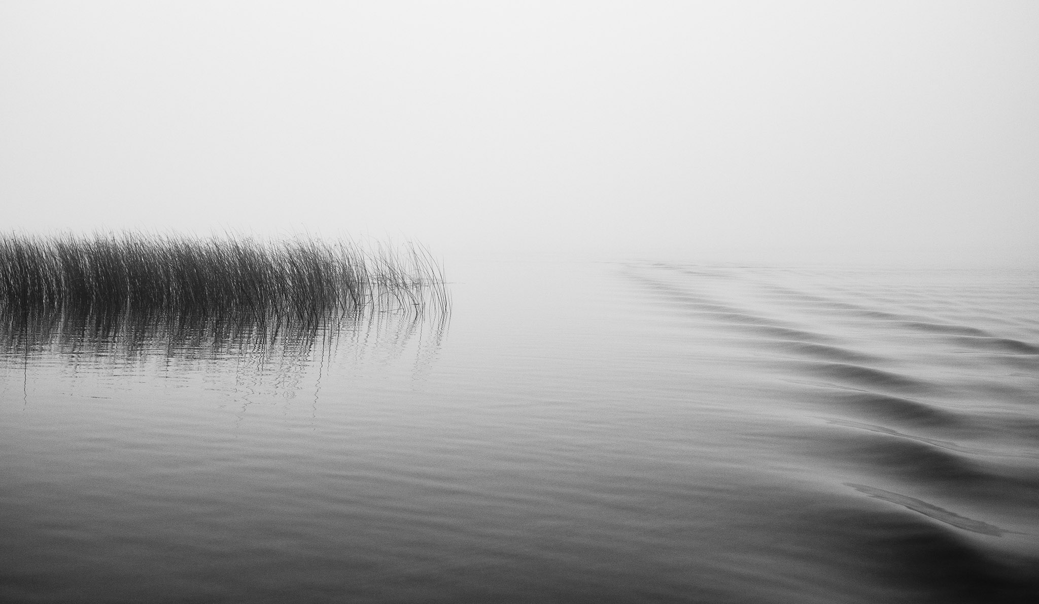 Lake Carlos Fog | Alexandria, MN • photographed for me ; )