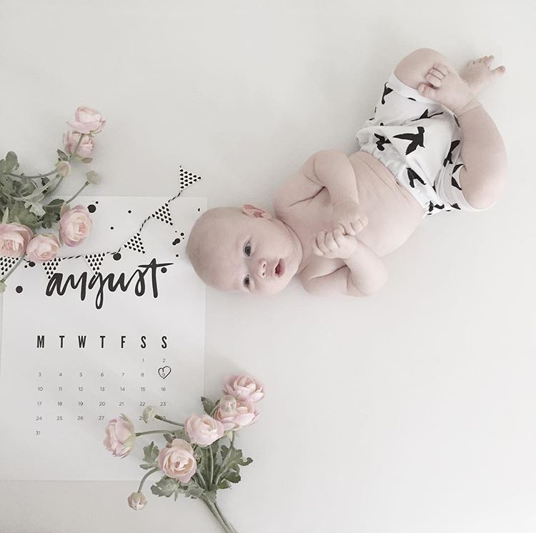 Simple And Sweet Monthly Baby Photo Ideas Mushybooks Modern Baby Books