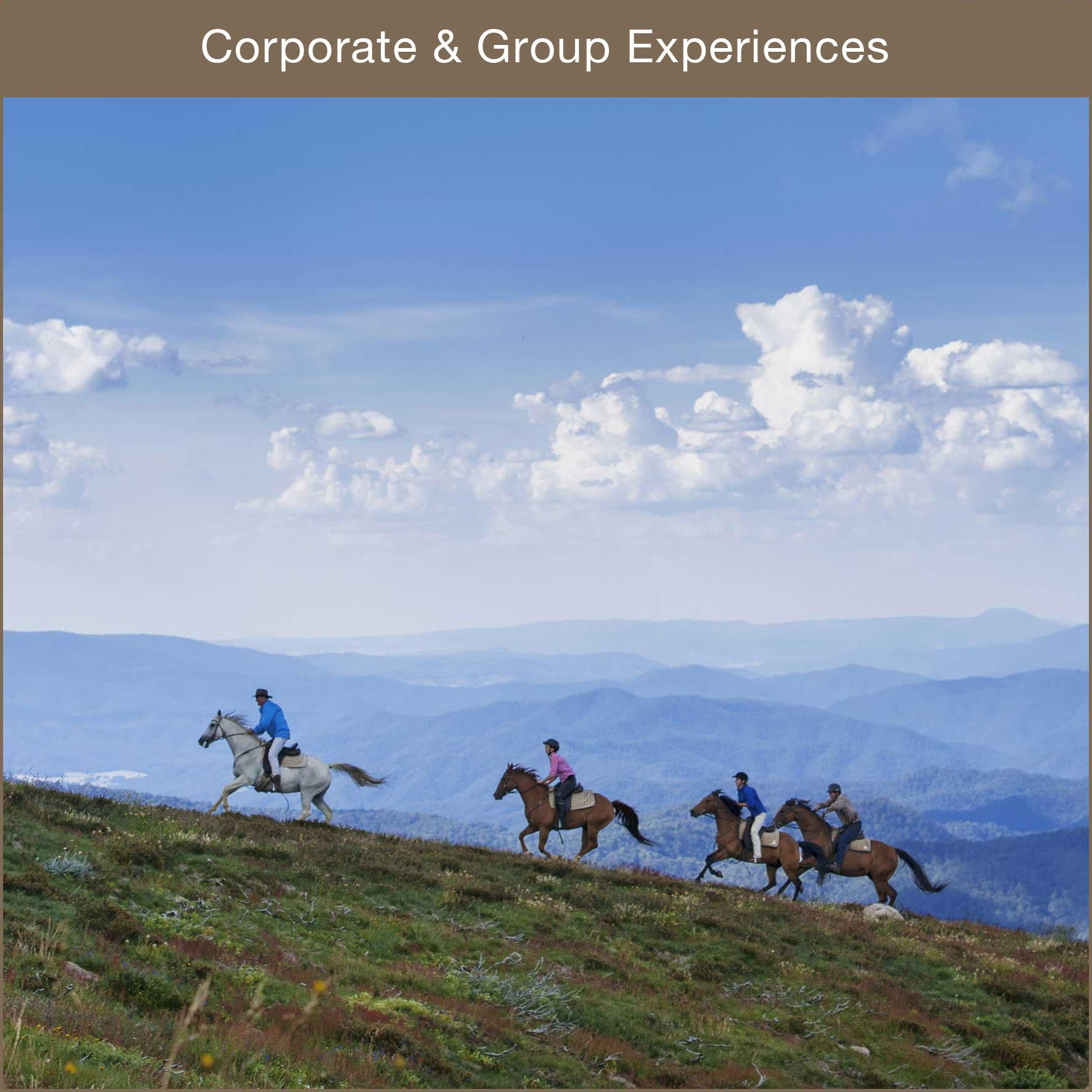 Corporate team building, horsemanship clinics, catering & entertainment.